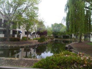 107 Shorebird Circle – Redwood City, CA