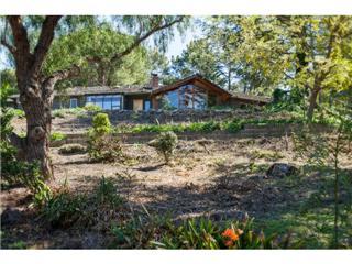 25600 Fernhill Drive – Los Altos Hills, CA