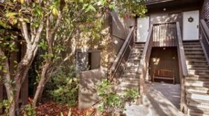 57 Pearce Mitchell Place – Stanford